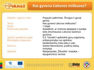 Kas gyvena Lietuvos miškuose?