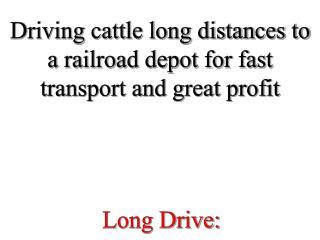 Long Drive: