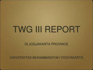 TWG III REPORT