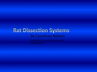 Rat Dissection Systems