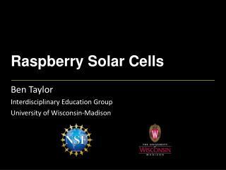 Raspberry Solar Cells