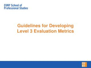 Guidelines for Developing Level 3 Evaluation Metrics