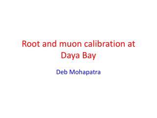 Root and  muon  calibration at  Daya  Bay