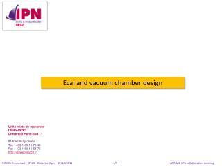 Ecal  and vacuum chamber design