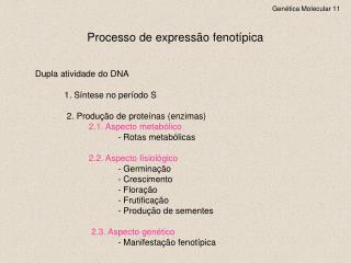 Genética Molecular 11