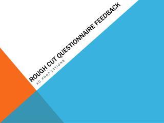 Rough cut questionnaire feedback