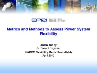 Metrics and Methods to Assess Power System Flexibility