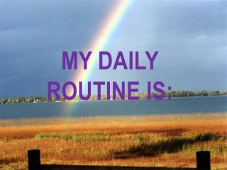 My daily routine is :