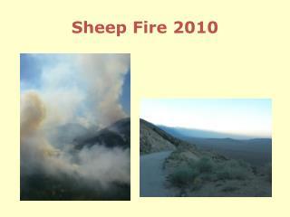 Sheep Fire 2010