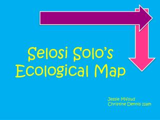 Selosi Solo's  Ecological Map