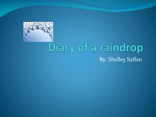 Diary of a raindrop