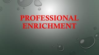 PROFESSIONAL ENRICHMENT