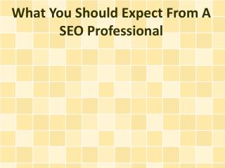What You Should Expect From A SEO Professional