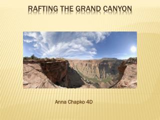 Rafting the grand canyon