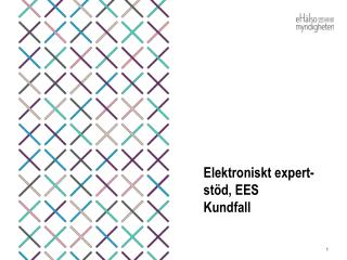 Elektroniskt expert-stöd, EES Kundfall