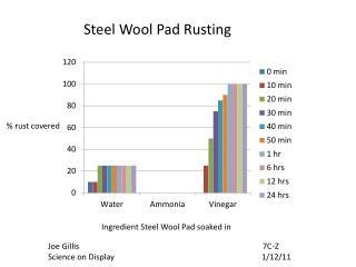 Ingredient Steel Wool Pad soaked in