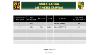 CADET PLATOON  LAST WEEKS TRAINING