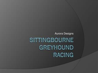 Sittingbourne greyhound  racing
