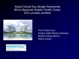 Prof Dr Haluk Onat Anadolu Sağlık Merkezi Hastanesi Medikal Onkoloji Bölümü Gebze, Kocaeli