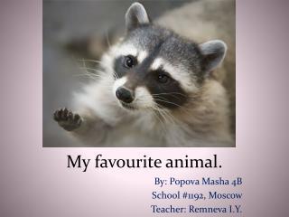 My  favourite animal.
