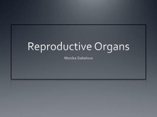Reproductive Organs