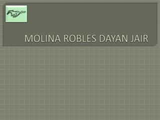 MOLINA ROBLES DAYAN JAIR