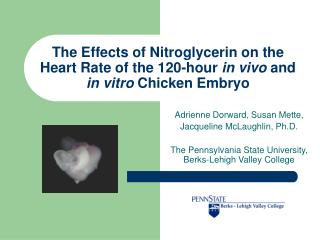 The Effects of Nitroglycerin on the Heart Rate of the 120-hour in vivo and in vitro Chicken Embryo