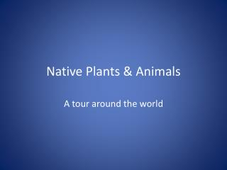 Native Plants & Animals
