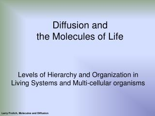 Diffusion and  the Molecules of Life