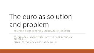 The euro  as solution  and  problem