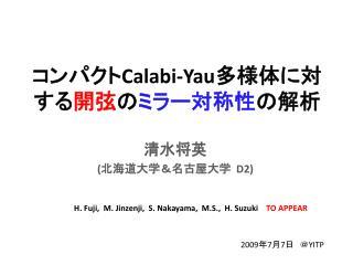コンパクト Calabi-Yau 多様体に対する 開弦 の ミラー対称性 の解析