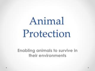 Animal Protection