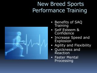 New Breed Sports      Performance Training