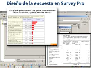 Diseño de la  encuesta en  Survey  Pro