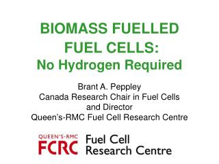 BIOMASS FUELLED  FUEL CELLS:  No Hydrogen Required  Brant A. Peppley Canada Research Chair in Fuel Cells and Director Qu