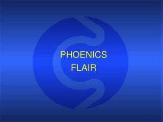 PHOENICS FLAIR