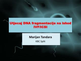 Utjecaj DNA fragmentacije na ishod IVF/ICSI