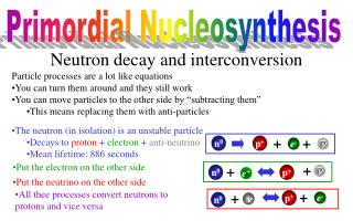 Neutron  decay and  interconversion