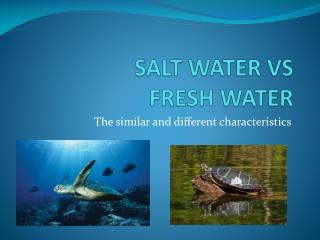 SALT WATER VS  FRESH WATER