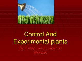Control And Experimental plants