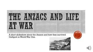 The Anzacs and Life at war