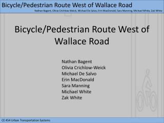 Bicycle/Pedestrian Route West of Wallace Road
