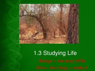 1.3 Studying Life