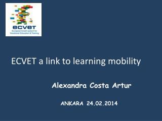 Alexandra Costa Artur  ANKARA 24.02.2014