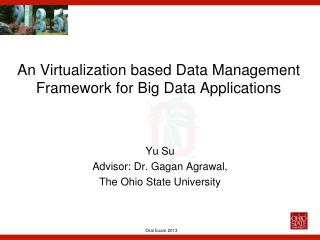 An Virtualization based Data Management Framework for Big Data Applications