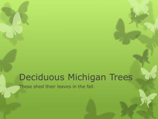 Deciduous Michigan Trees