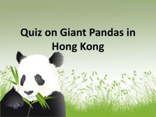 Quiz on Giant Pandas in Hong Kong