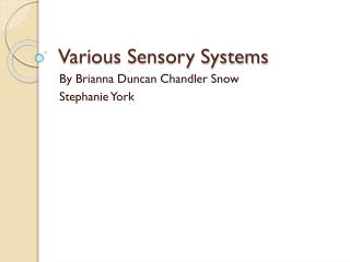 Various Sensory Systems