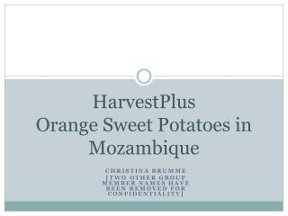 HarvestPlus Orange Sweet Potatoes in Mozambique
