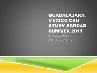 Guadalajara, Mexico CSU Study Abroad Summer 2011
